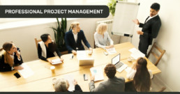 Blog Posts_PROFESSIONAL PROJECT MANAGEMENT