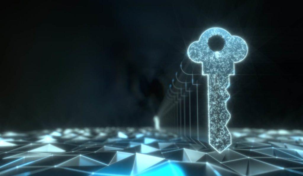 network vulnerability assessments
